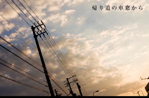 20101007f.jpg